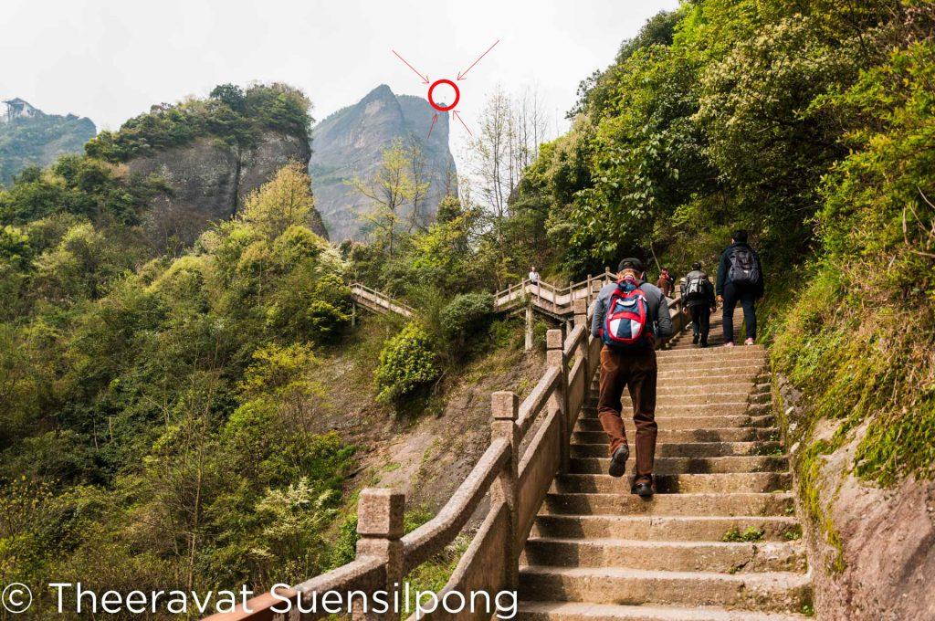 บันไดเดินขึ้นยอดเขาพริก จุดหมายบนเขาของเราในวันนี้อยู่ตรงวงกลมสีแดงในรูปนะครับ ตรงนั้นจะมีธงปักอยู่ (รูปอาจจะเล็กไปหน่อยนะ)